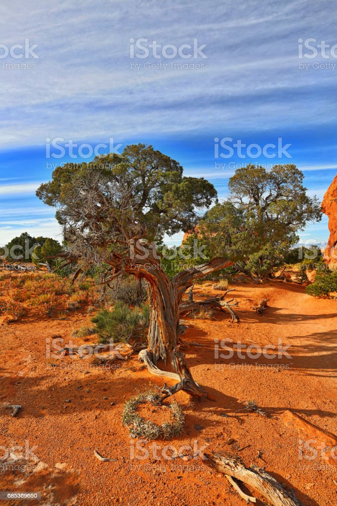Arches National Park Double O Arch Hiking Trail foto de stock royalty-free