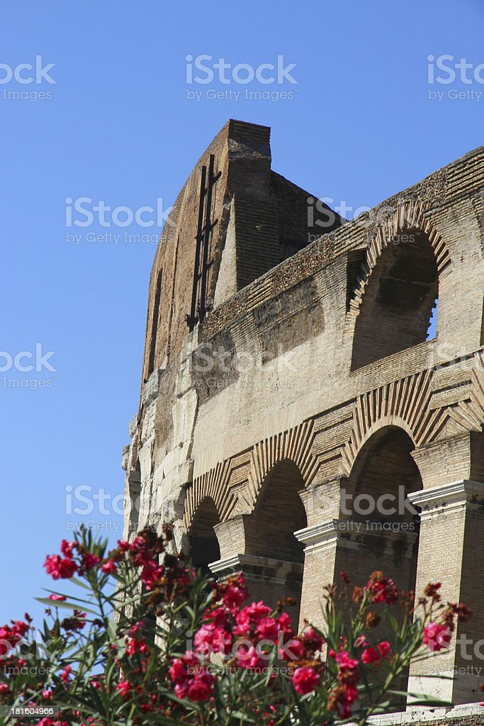 Arches of Colosseum and flowering plants stock photo