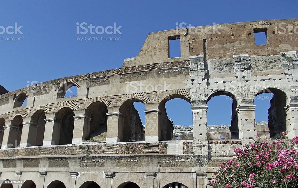 Arches of the Colosseum among flowering plants royalty-free stock photo