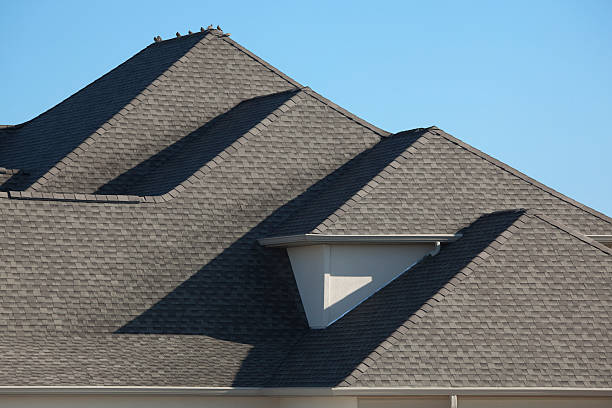 Architectural Asphalt Shingle Rooftop With Morning Dove Birds stock photo