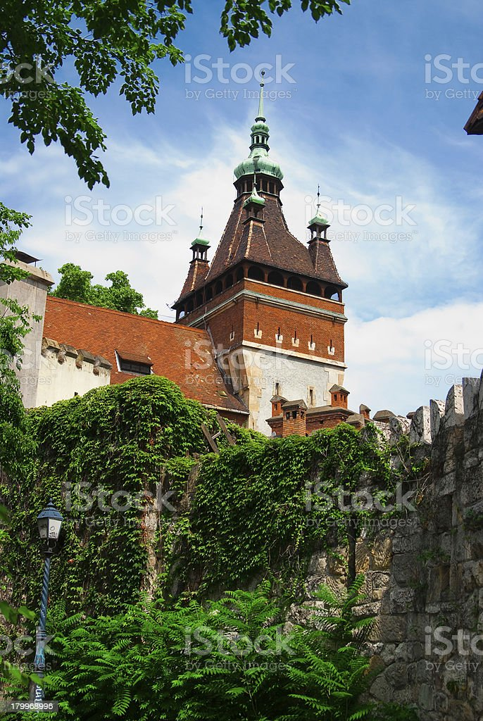 Architectural detail in Budapest royalty-free stock photo