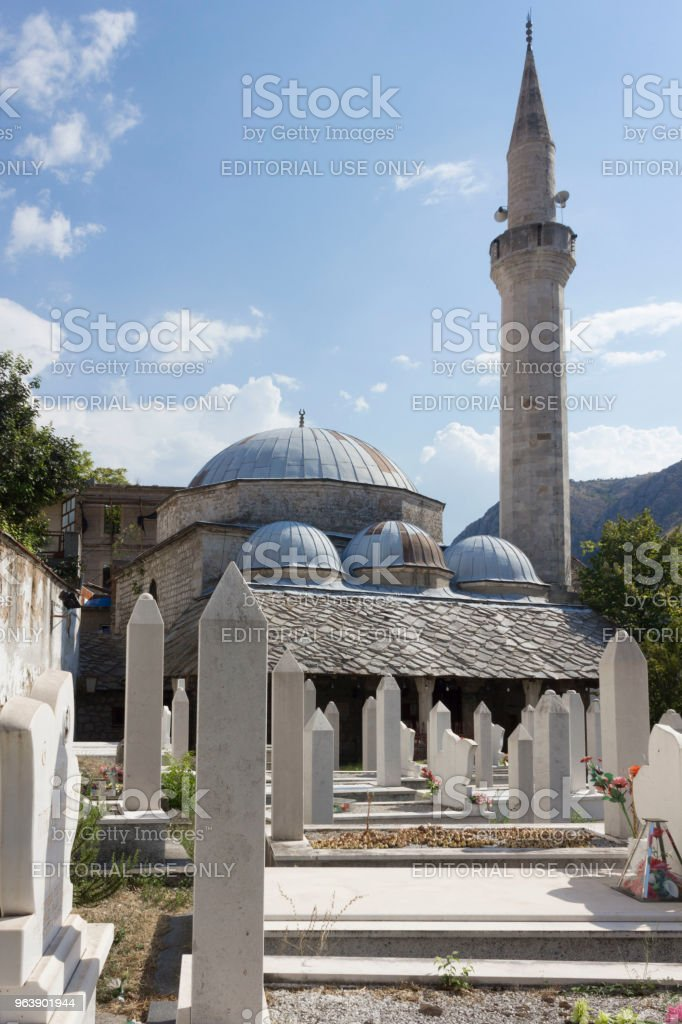 Architectural view of Nesuh Aga Vucjakovic Mosque - Royalty-free Architectural Dome Stock Photo