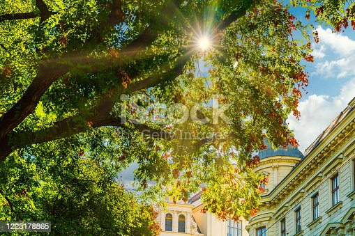 View to Baroque residential buildings in the centre of Vienna through the tree branches. Blue sky with the sun on the background.