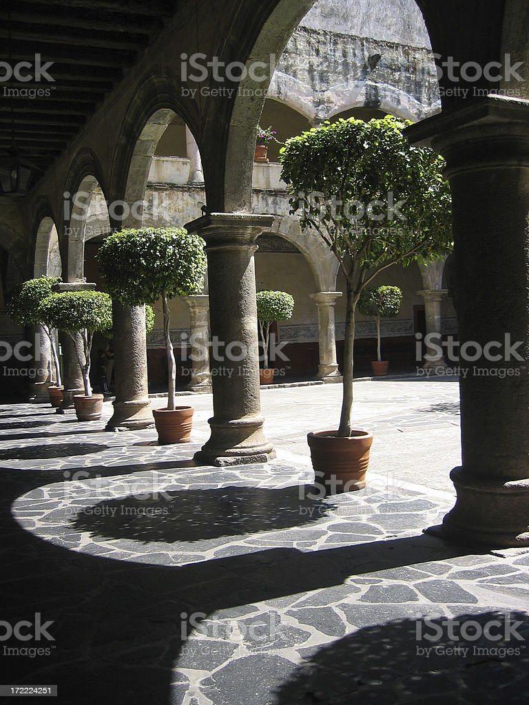 Arch-tree royalty-free stock photo