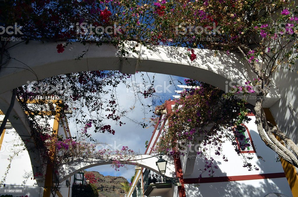 archway decorated with plants on canary islands stock photo