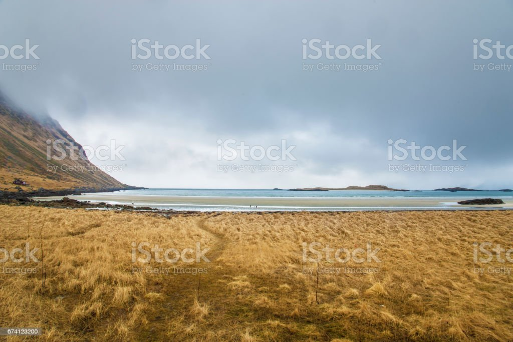 Arctic beach 免版稅 stock photo