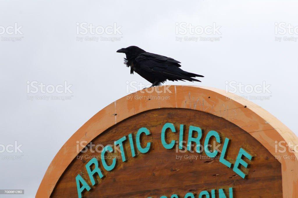 Arctic Circle sign stock photo