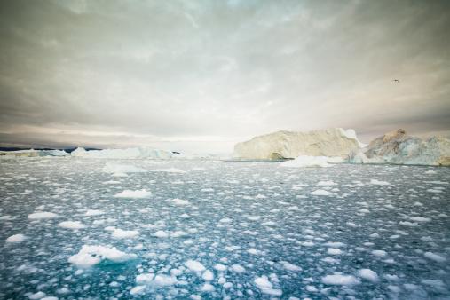 Arctic Icebergs Ilulissat Greenland Stock Photo - Download Image Now