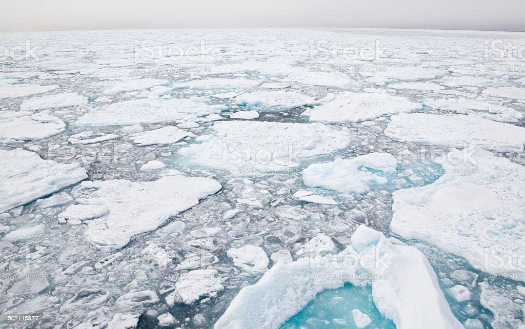 Arctic Pack Ice stock photo
