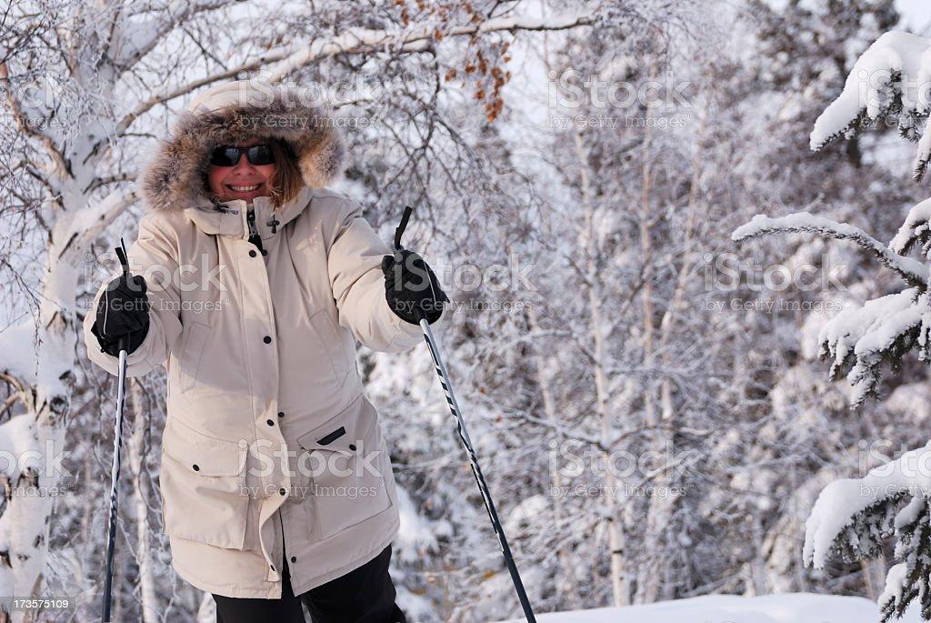 Arctic Skier. royalty-free stock photo