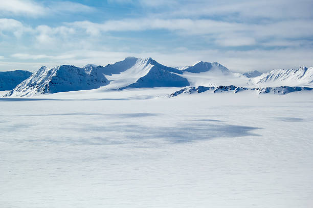 arctic spring in south spitsbergen. - wildplassen stockfoto's en -beelden