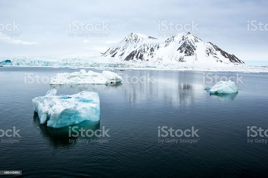 Arctic spring in Spitsbergen stock photo