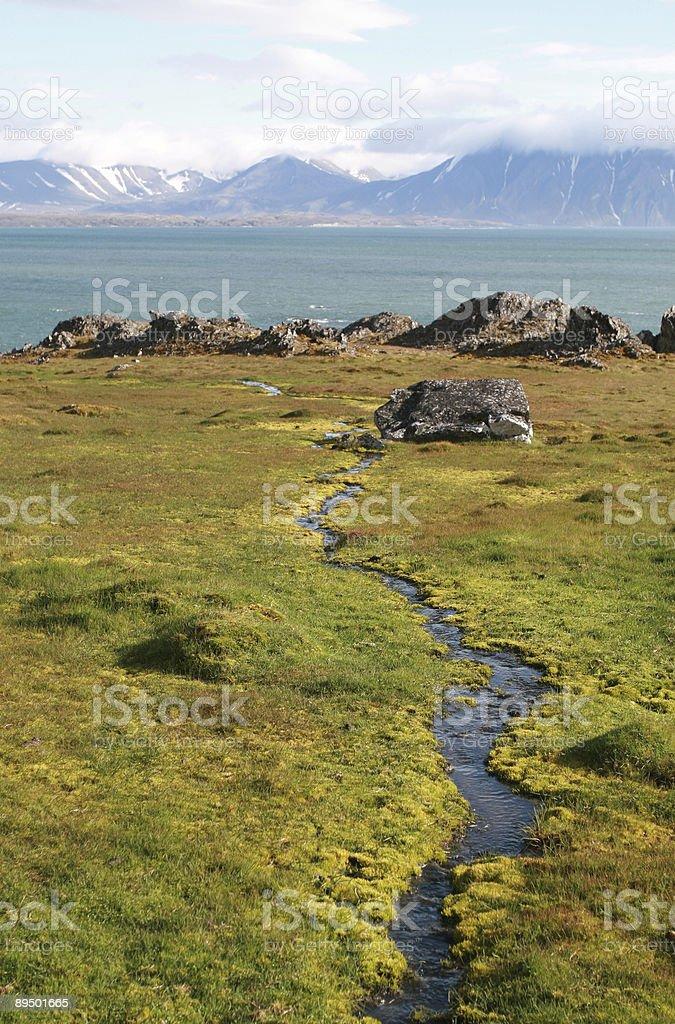 Arctic Stream royalty-free stock photo