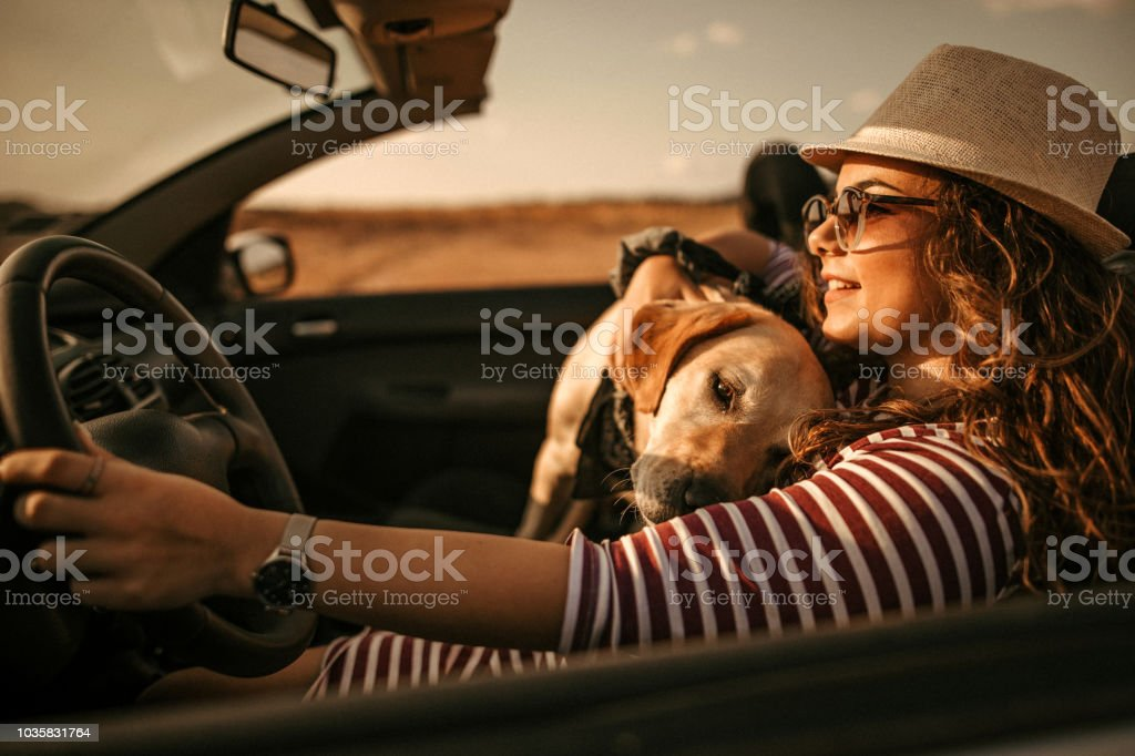 Are you with me? stock photo