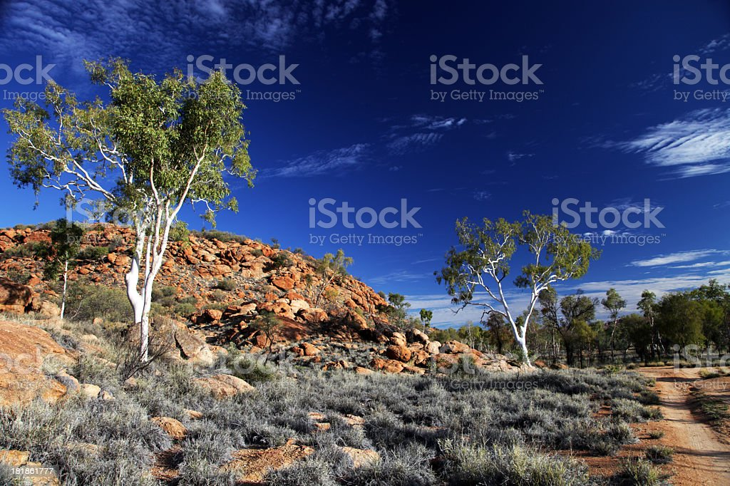 Area in the desert known as the ghost gums stock photo