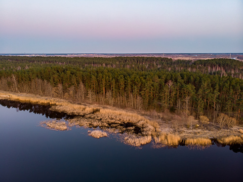 Areal drone view of small river near pine tree forest.
