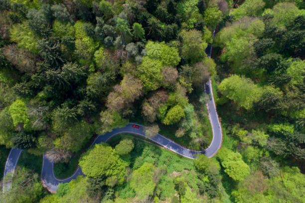 Areal view of a curvy road stock photo