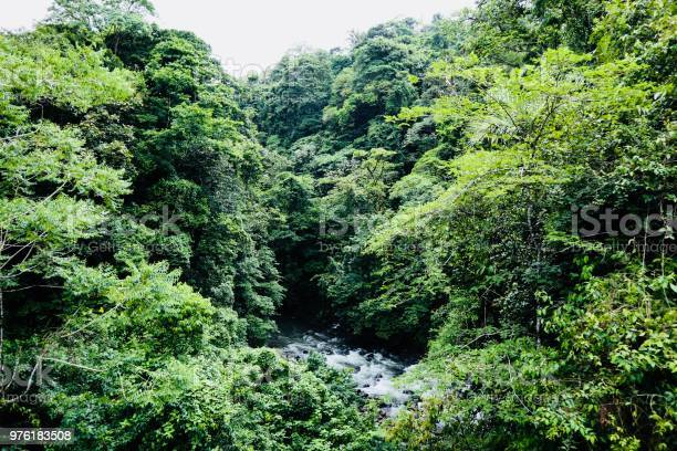 Photo of Arenal River View