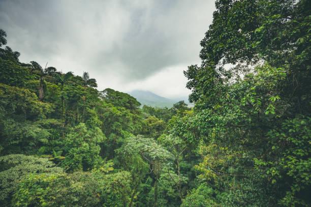 Arenal Vulkan und Regenwald, costa rica – Foto