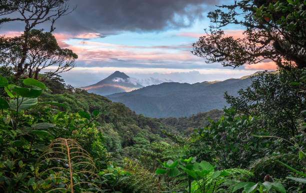 61 215 Costa Rica Stock Photos Pictures Royalty Free Images Istock