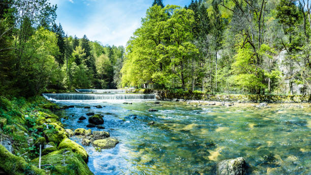 areuse, river in the neuchâtel jura, switzerland, panorama - spring стоковые фото и изображения