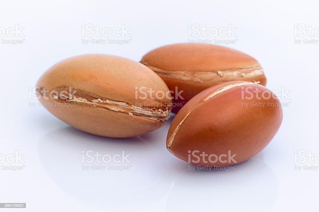 Argan fruit (Argania spinosa), nuts and oil stock photo
