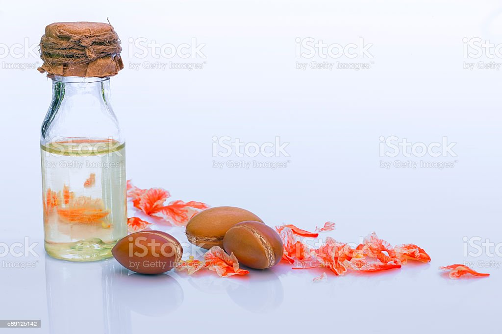 Argan fruit (Argania spinosa), nuts and oil stock photo