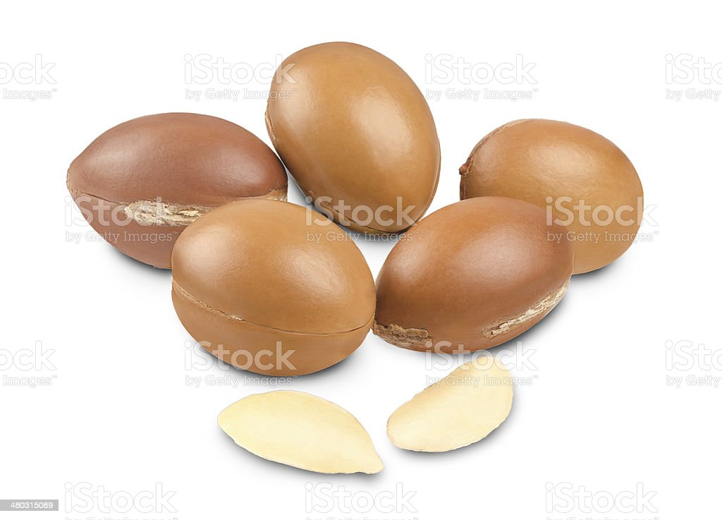 Argan fruit on white stock photo