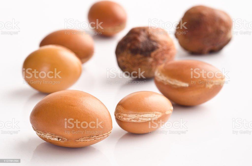 Argan fruit royalty-free stock photo