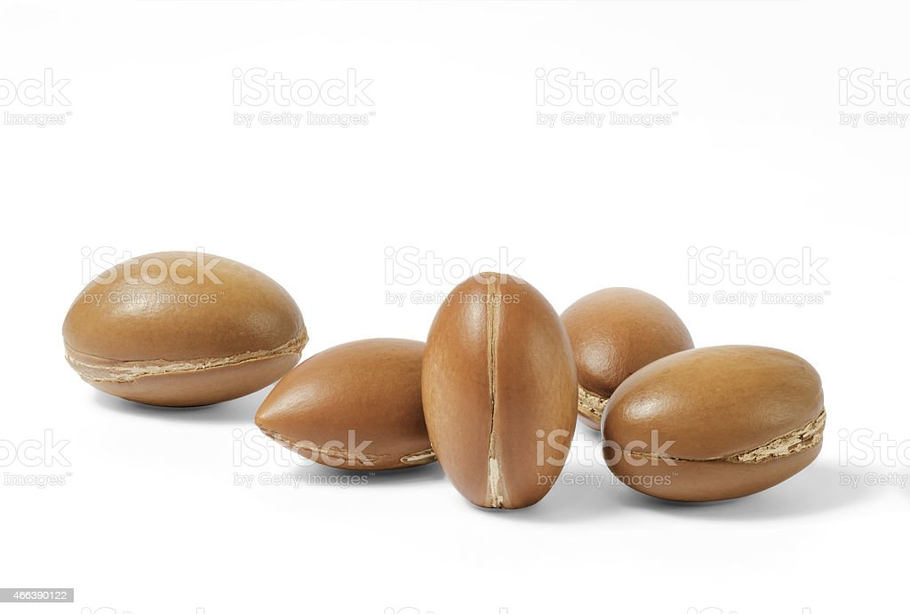 noix d'argan stock photo