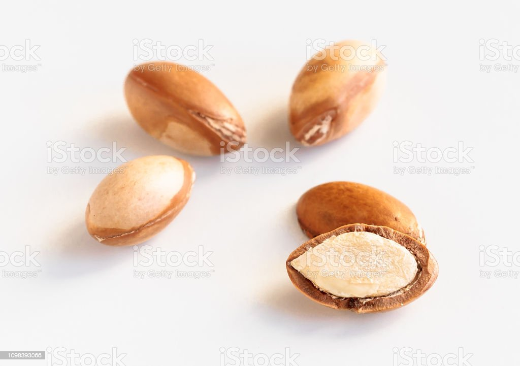 Argan nuts. Seeds of argania spinosa on white,a close up isolated on white stock photo