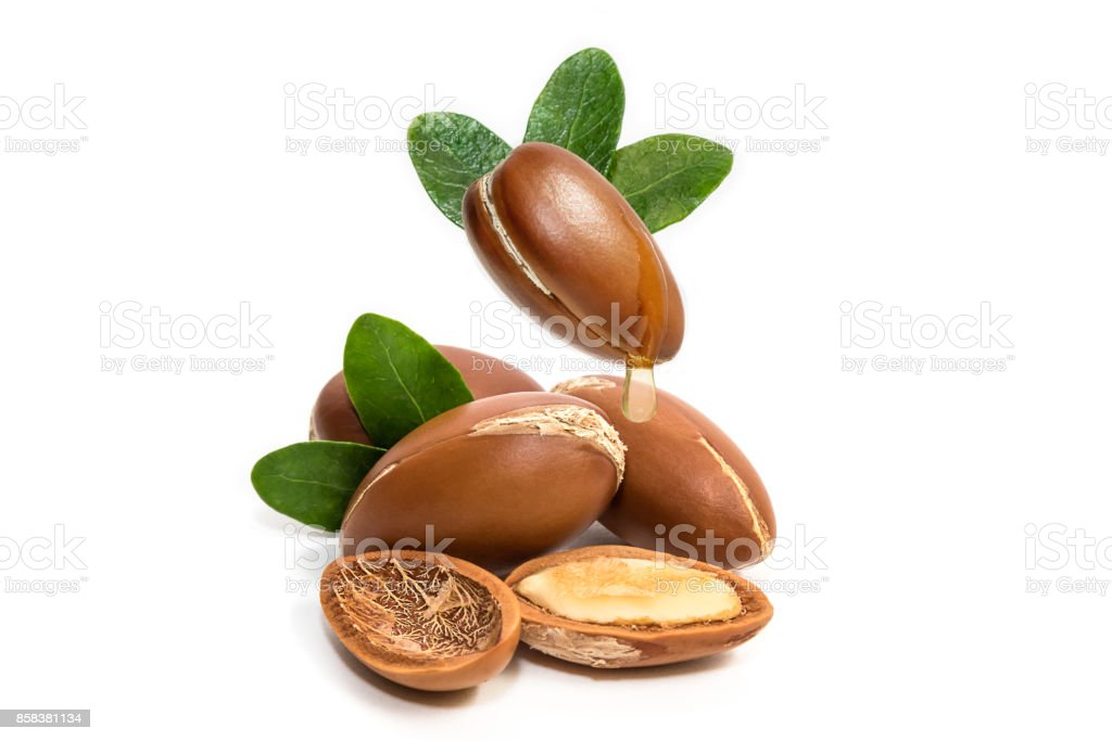 Argan oil. Argan nuts, with oil drop and leaves of its tree stock photo