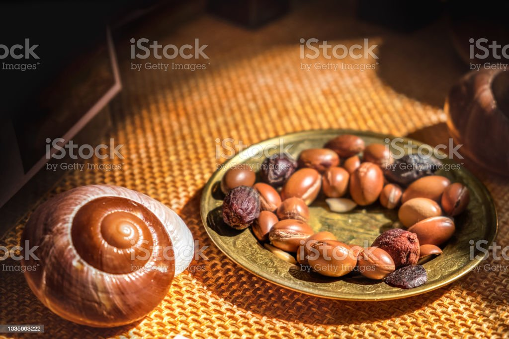 Argan oil is made by Argan nuts - Argan fruit is useful as antioxidant for healing, redness, inflammations and skin stretch marks stock photo
