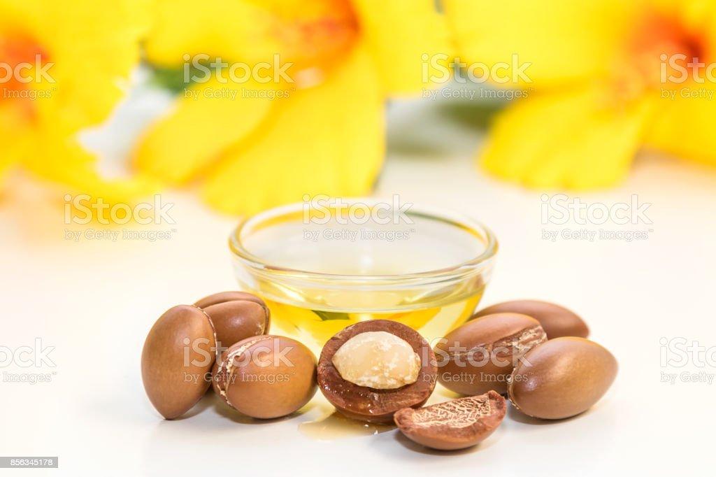 Argan oil stock photo