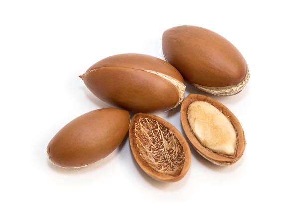 Argan tohumları stok fotoğrafı
