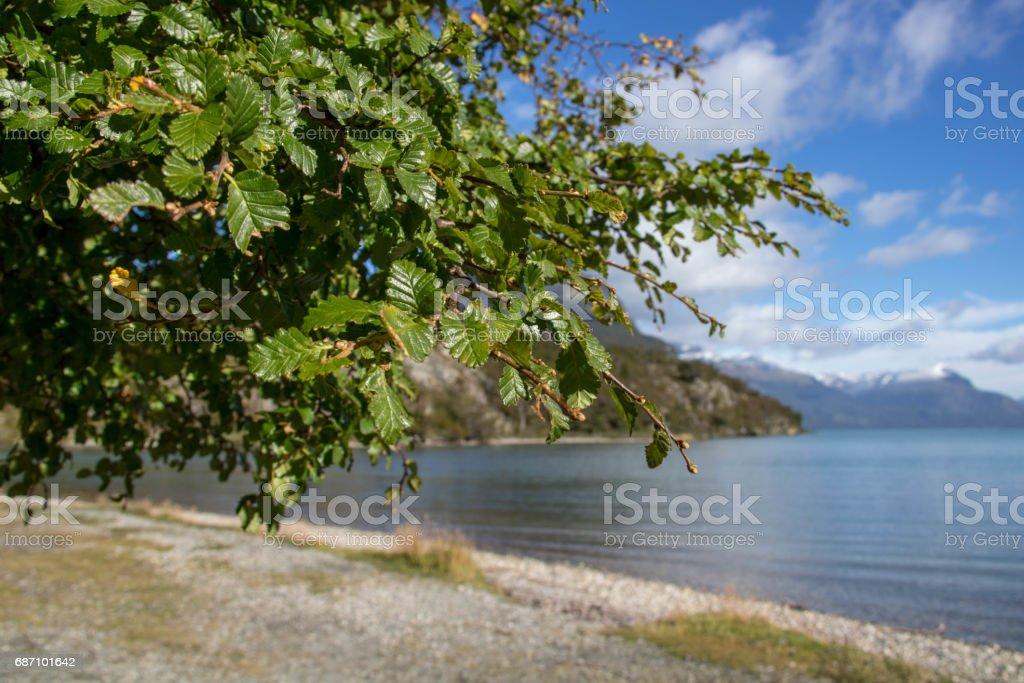 Argentina: Lago Roca Lizenzfreies stock-foto