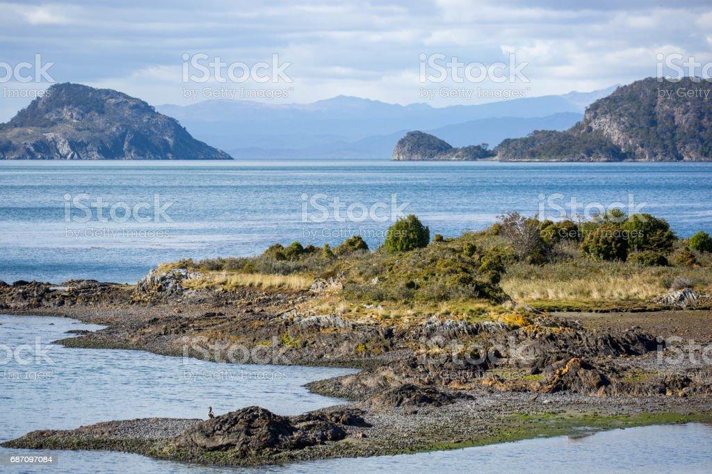 Argentina: Tierra del Fuego National Park Lizenzfreies stock-foto