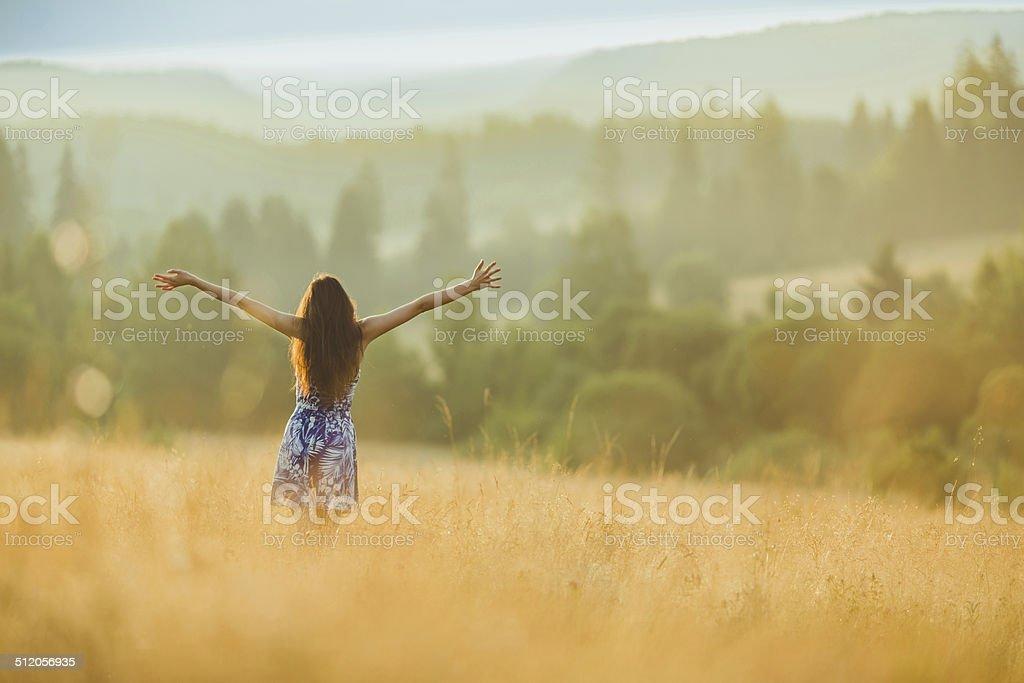 Ariadne on meadow stock photo