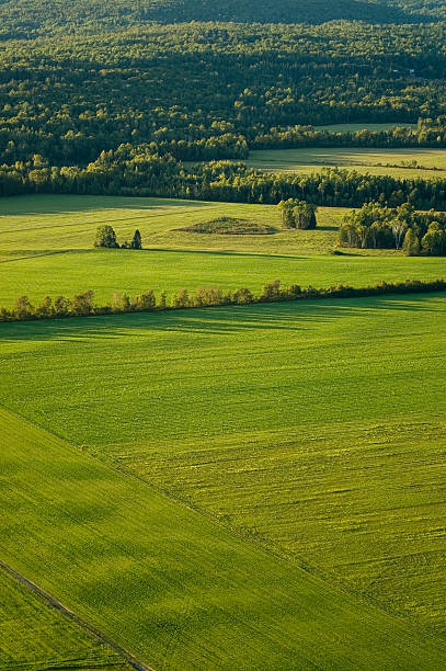 Arial view of the countryside stock photo