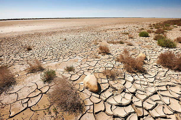 arid and waste land stock photo