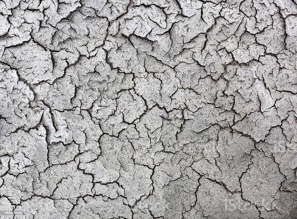 Arid Cracked Dry Land Texture Background stock photo