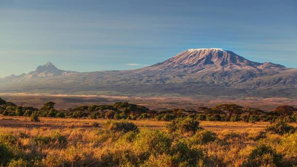 arid dry African savanna in late evening with Mount Kilimanjaro, highest peak i Africa. Amboseli National Park, Kenya stock photo