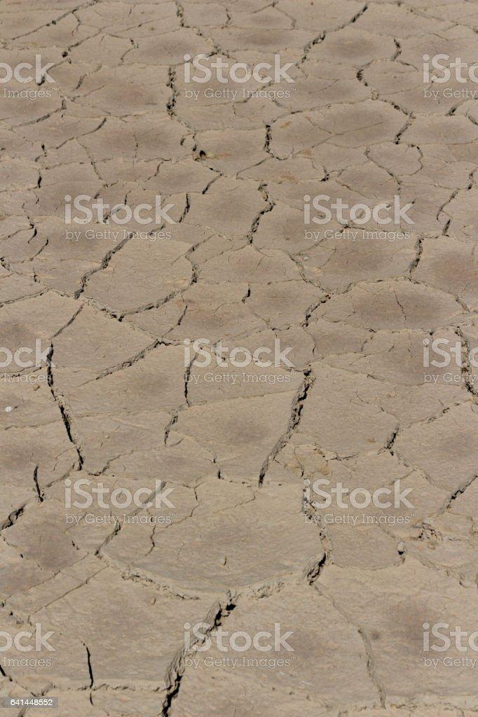arid land.