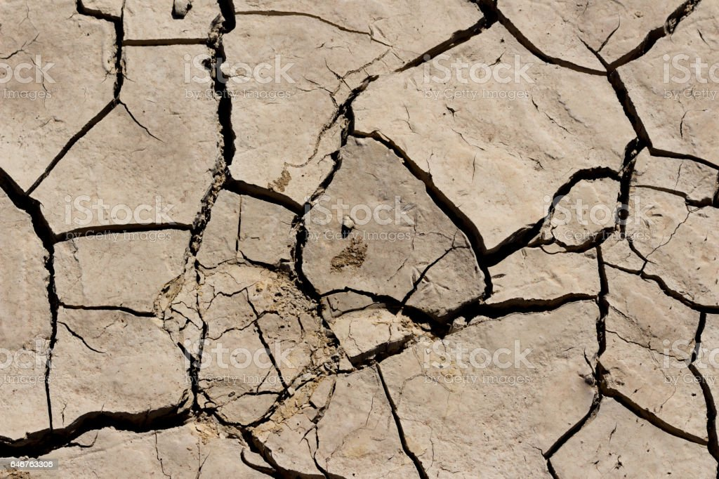 arid land. stock photo