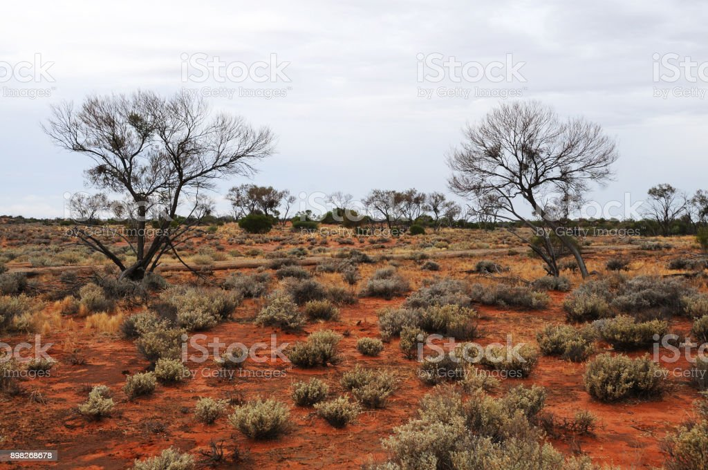 Arid Lands, Roxby Downs, South Australia stock photo
