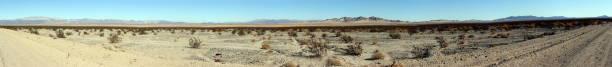 Arid landscape in the Mojave desert near Twentynine Palms at sunset, California, USA stock photo