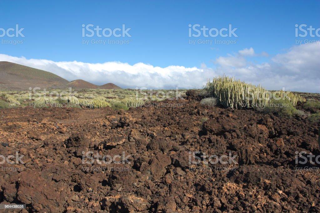 Arid landscape of Malpaís de Güímar. - Royalty-free Agricultural Field Stock Photo