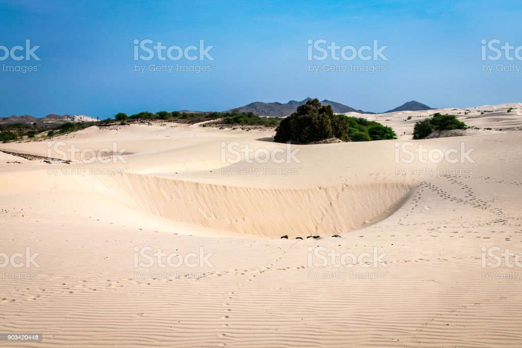 Arid sand environment of the edge of the Viana Desert, Boa Vista in front of lush green forest, Cape Verde - foto stock