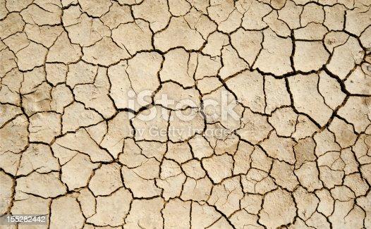 Dry Soil detail.