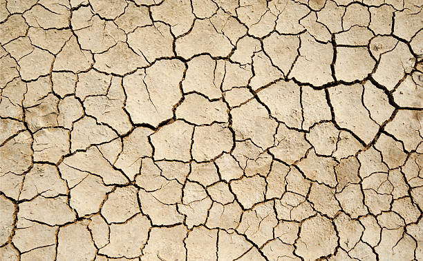 Aridity Dry Soil detail.  dry stock pictures, royalty-free photos & images